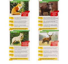 071-0113 Мини-энциклопедия «Лесные животные», 20 страниц