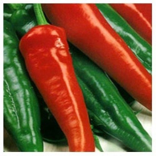 Перец Тассили F1 семена перца острого (Clause / Клос) Тассили_F1_семена_овощей_оптом.jpg