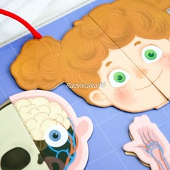 Игра магнитная Анатомия человека