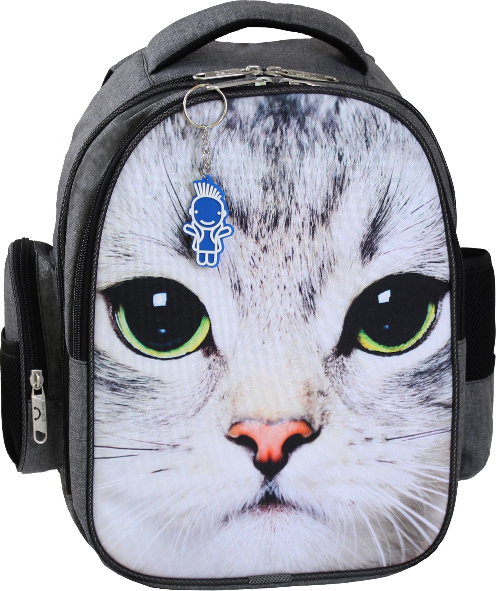 Школьные рюкзаки Рюкзак Bagland Pupil 14 л. серый 186 (0012569) IMG_0070.JPG
