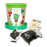 Набор для выращивания в горшочках Happy Plant Огурец корнишон
