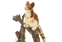 Hansa Древесный кенгуру, 23см (5357)