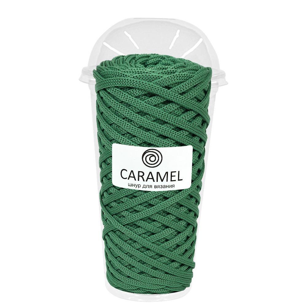 Плоский полиэфирный шнур Caramel Полиэфирный шнур Caramel Алоэ алое.jpg