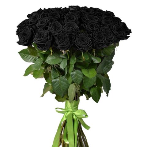Розы черные от 9шт