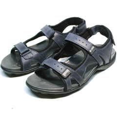 Спортивные сандали на толстой подошве мужские Mi Lord 2066EKO Blue