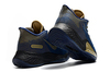 Nike Air Zoom BB NXT 'Navy/Gold'