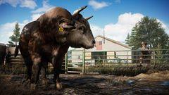 PS4 Far Cry 5 (русская версия)