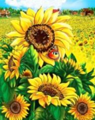 Картина раскраска по номерам 40x50 Поле подсолнухов
