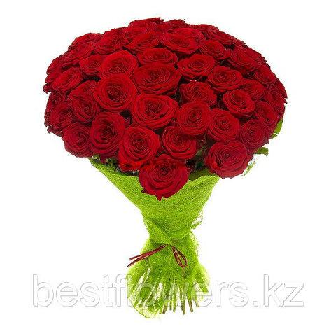 Букет из 51 розы (70 см)