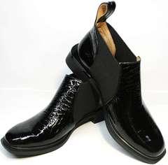 Модные ботильоны с квадратным носком Ari Andano 721-2 Black Snake.
