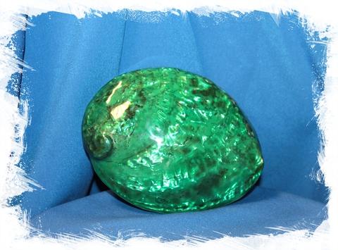 Галиотис Зеленый