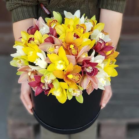 Стильная коробка с орхидеей