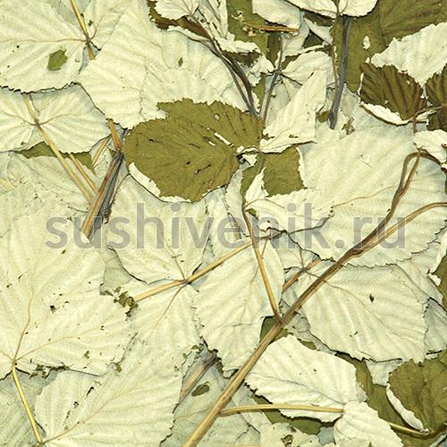 Сушеные ветви малины