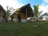 Серф-пакет Safa Surf Camp Shared