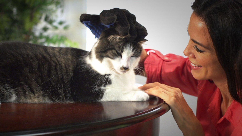 Перчатка для вычесывания шерсти домашних животных Тру Тач - True Touch