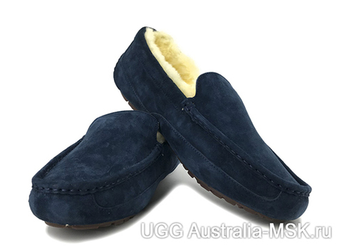 UGG Mens Ascot Navy