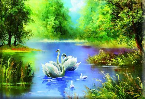 Алмазная Мозаика + Багет 30x40 Лебеди на фоне красочной природы
