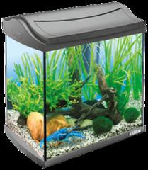 Аквариумный комплекс для рачков, Tetra AquaArt Crayfish Discover Line, 30 л