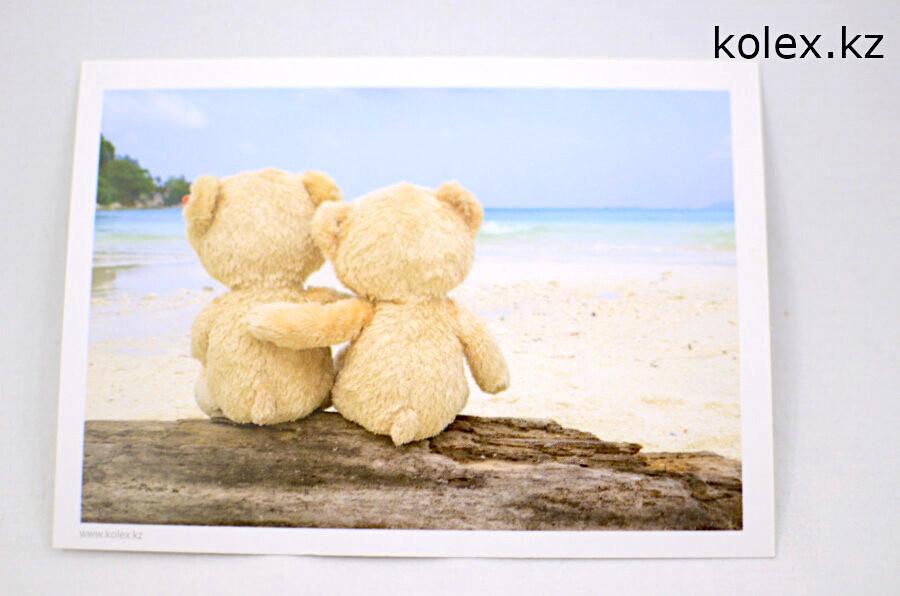 открытка медведи