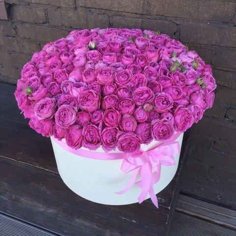 101 роза Мисти Бабблз в большой белой коробке