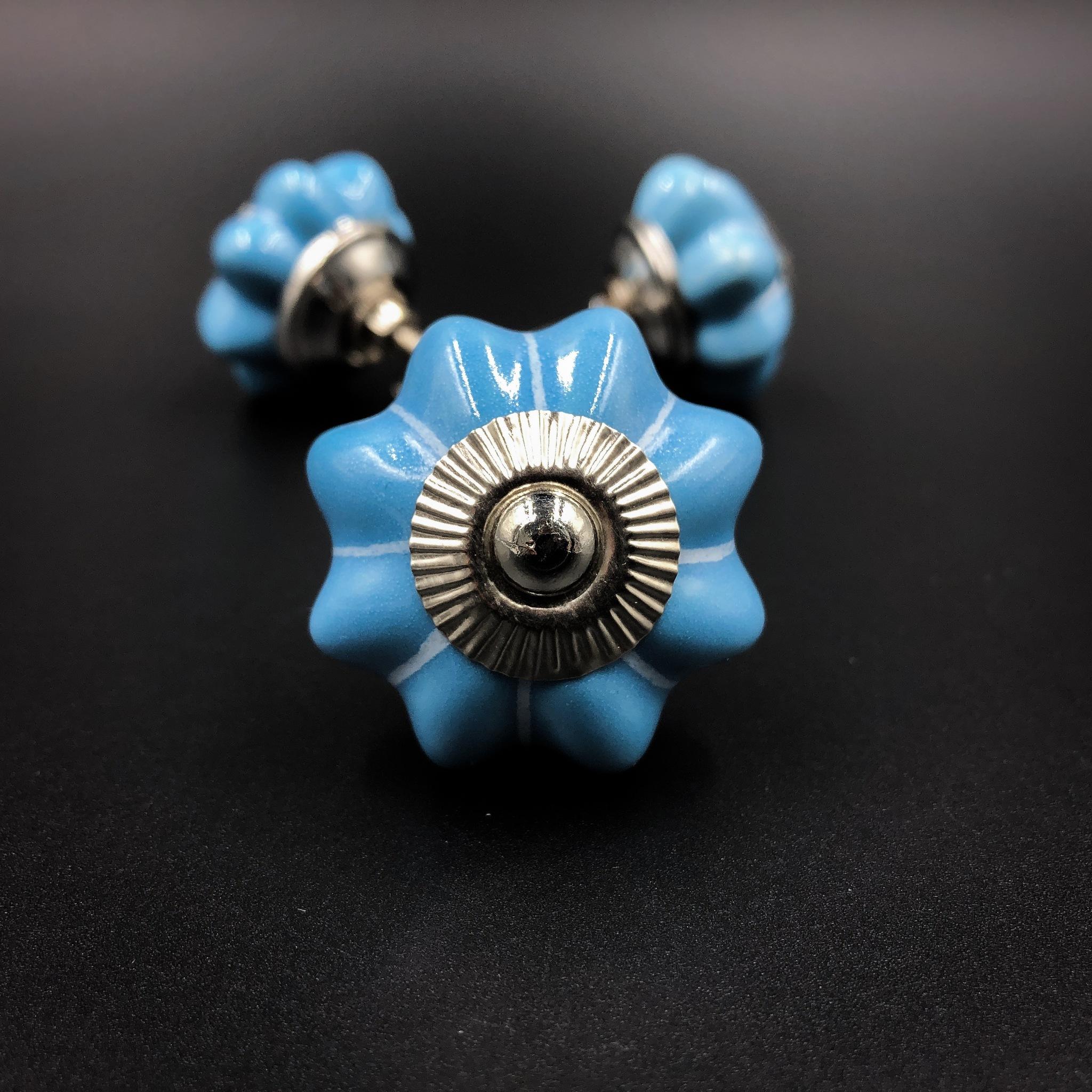 Цветные Ручка кнопка AW2 Bleu IMG_2609.JPG