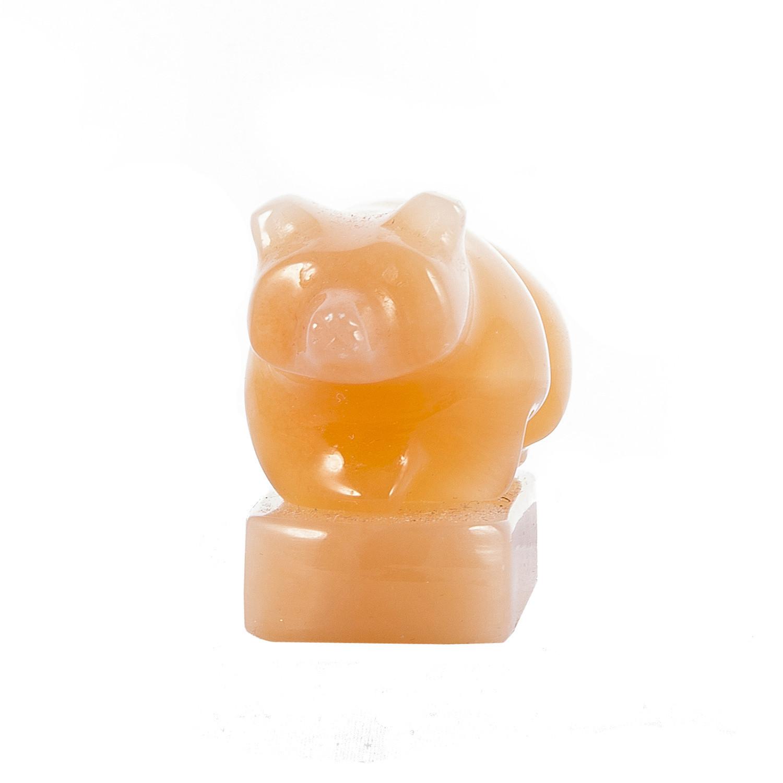 Медведь селенит
