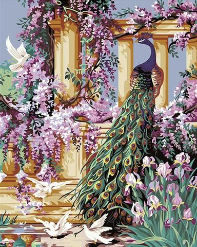Картина раскраска по номерам 30x40 Гордый павлин в саду