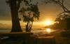 Июльский серф-тур на остров Ява в райский G-land для продвинутых серферов