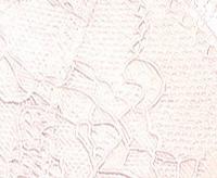Трусы женские мини бикини LP-2637 (1шт.)