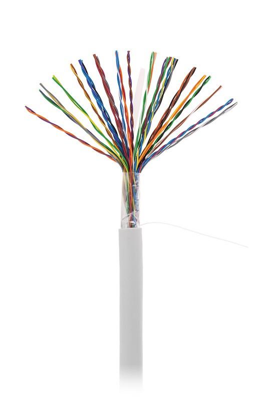 Кабель NETLAN U/UTP 25 пар, Кат 5 (Класс D), 100МГц, одножильный, BC (чистая медь), внутренний, PVC нг(B), серый, 305м, купить оптом по низкой цене