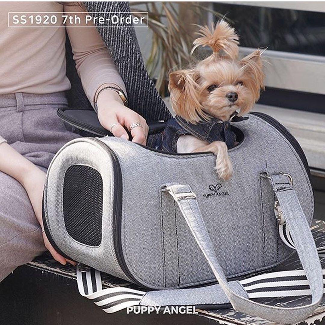 109 сумка для собак честер авиа