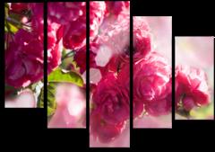"""Модульная картина """"Розовый пион"""""""