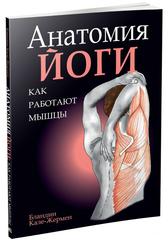 Анатомия йоги: как работают мышцы