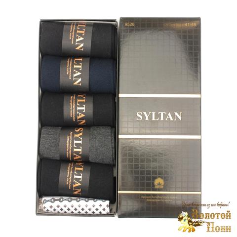 Носки мужские в коробочке 5 ШТ+платок (41-46) 191208-S9526