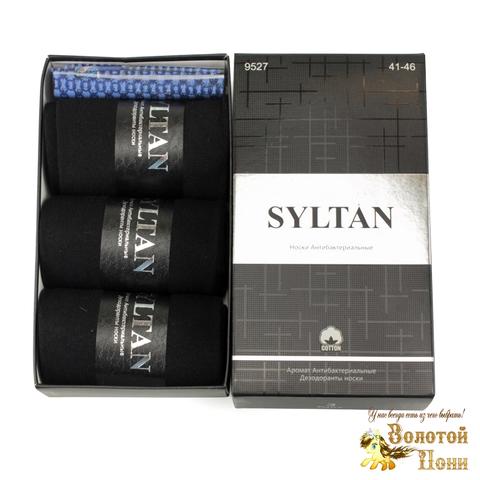 Носки мужские в коробочке 3 ШТ+платок (41-46) 191208-S9527