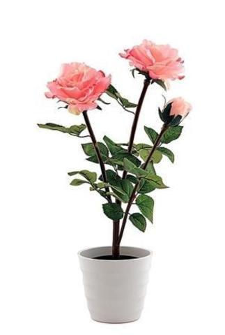 Светильник  СТАРТ   LED роза3 розовый