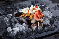 Морской коктейль с моллюсками