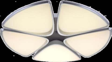 INL-9368C-60 White & Silver