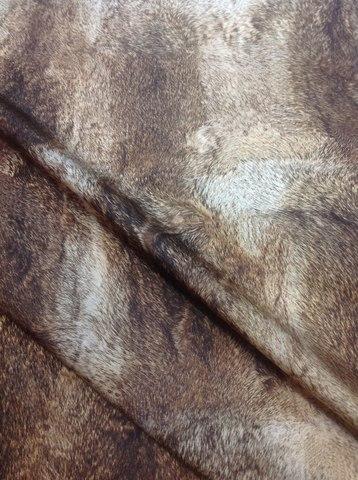 Ткань плащевая