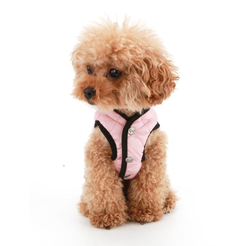 собака куртка фото