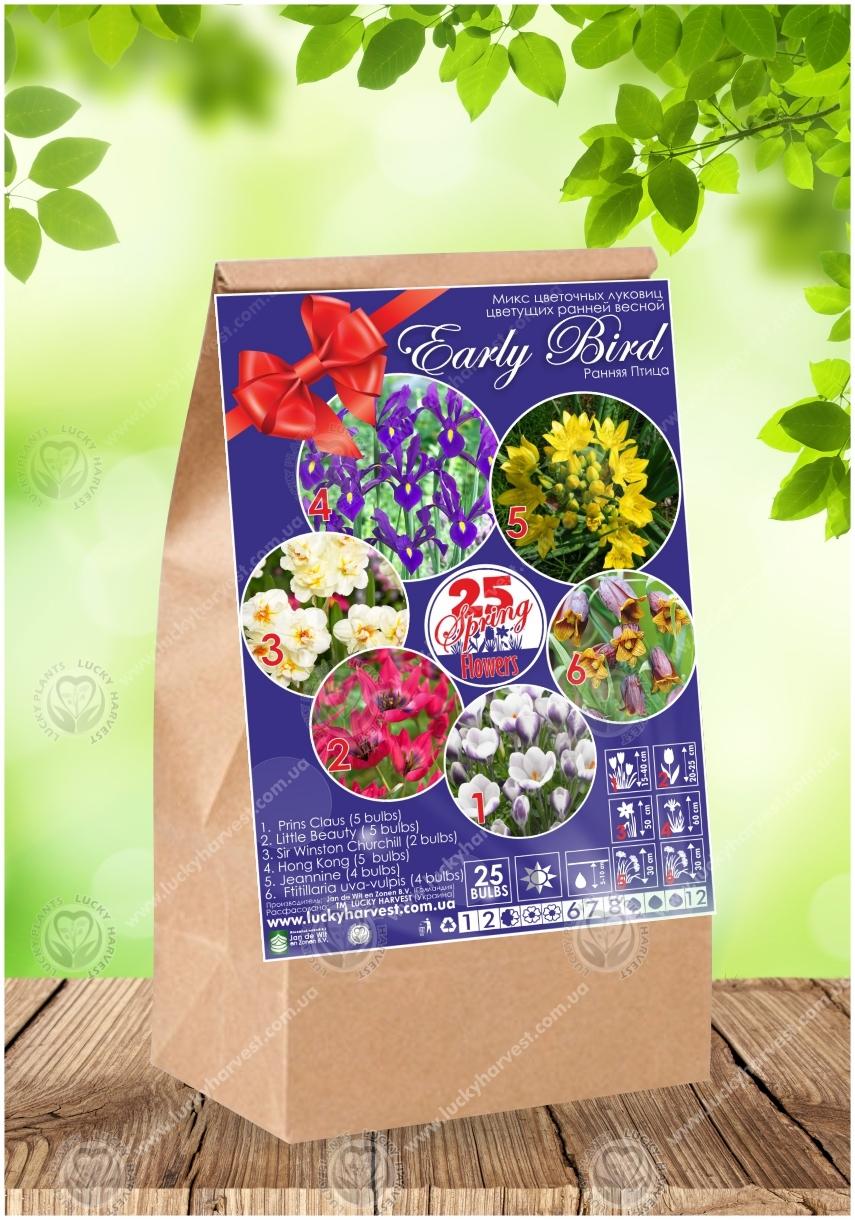 Набор весеннецветущих луковичных цветов