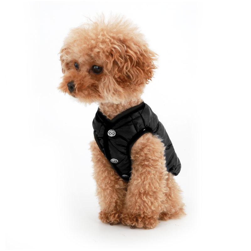 куртка порода собак