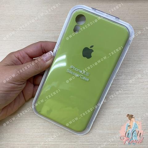 Чехол iPhone XR Silicone Slim Case /lime/