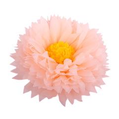 Бумажный цветок 40/15 см персиковый+ярко-желтый