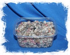 Умбониум разноцветный