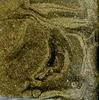 Краска-лак SMAR для создания эффекта эмали, Металлик. Цвет №4 Золото Инков