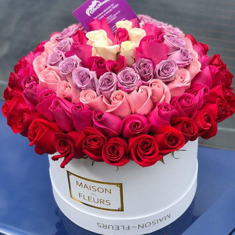 101 элитная голландская роза в коробке