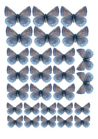 Печать на вафельной бумаге, Набор Бабочки 8