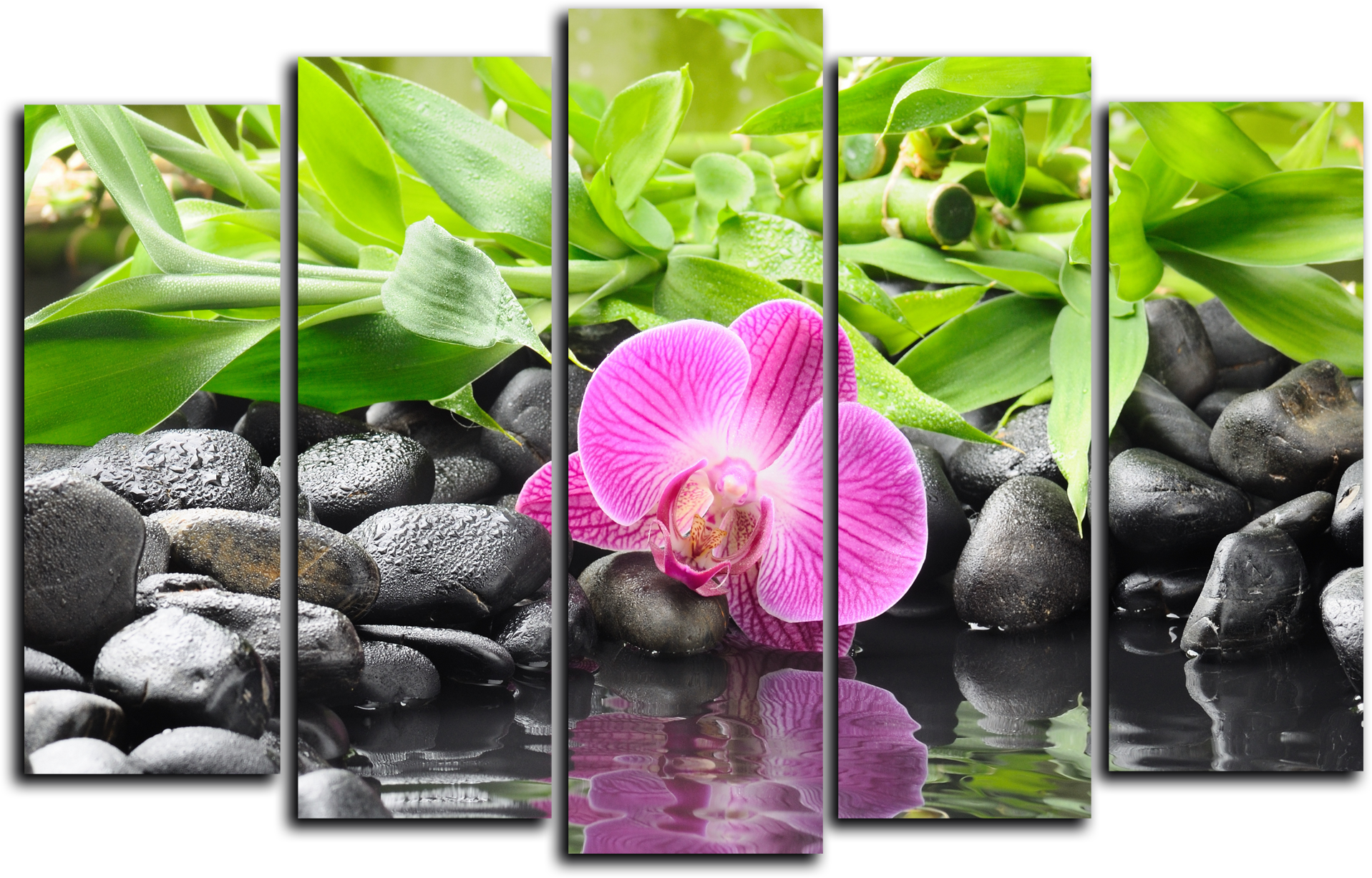 """Цветы Модульная картина """"Ручей и розовая орхидея"""" М769.png"""