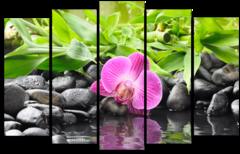 """Модульная картина """"Ручей и розовая орхидея"""""""